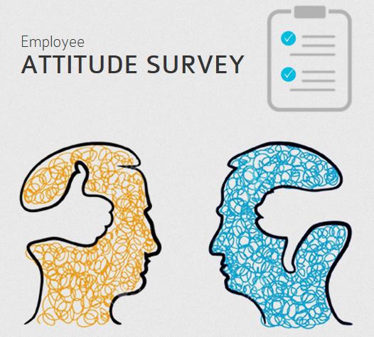 Attitude Survey Image